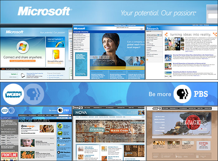 Examples of site identity graphics from the Microsoft and WGBH web sites. 9970674904c