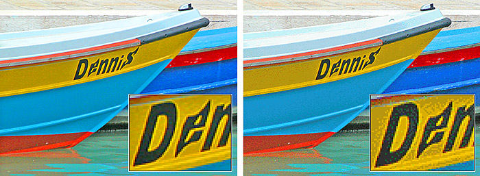 A two-part comparision of the same photographic image in full color on the left, and at right the image reduced to 256 colors with heavy color dithering.